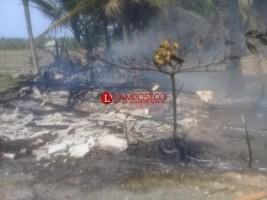 Kebakaran Hanguskan Rumah Warga di Pekon Sumber Agung