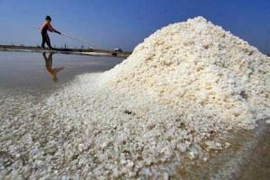 Kecolongan Besar Garam Ilegal