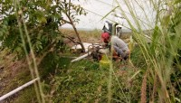 Kekeringan, Petani Lamsel Gunakan Elpiji untuk Pompa Air