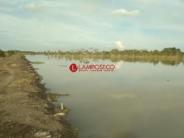 Kementan Kembangkan Program Serasi di Lampung