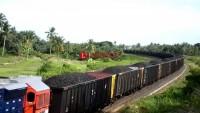 Kereta Api, Solusi Angkutan Batu Bara