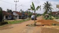 Kesal Jalan Rusak Tidak Kunjung Diperbaiki, Badan Jalan Ditanami Pohon Pisang