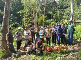 Kesatuan Pengelolaan Hutan Tanam 500 Batang Pohon Pala