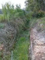 Komisi III DPRD Lamteng Minta Dinas Pertanian Cek Sawah di Telukdalem Ilir