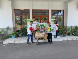 Komix Herbal Sebar Hewan Kurban di 26 Kota Besar Indonesia