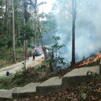 Komplek Pemakaman di Pesisir Tengah Nyaris Terbakar