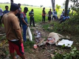 Komplotan Pencuri Sapi di Lambar Diamankan Polsek Pesisir Selatan