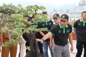 Komunitas Pecinta Bonsai Lambar Diminta Turut Berkontribusi Terhadap Konservasi