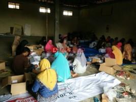 KPU Mesuji Kerahkan 125 Orang Untuk Melipat Kertas Suara