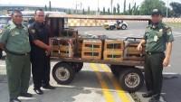 KSDA Gagalkan Penyelundupan 353 Burung Illegal