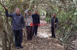 Lorong Jurang Seribew Layak Dikembangkan Menjadi Ekowisata