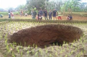 Lubang Misterius Muncul di Tengah Sawah Milik Warga di Sukabumi