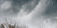 Malam Ini Hujan Lebat Disertai Petir dan Angin Kencang Diperkirakan Landa Sejumlah Wilayah Lampung