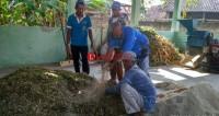Desa Mandalasari Kembangkan Pembuatan Pakan Fermentasi Ternak Sapi