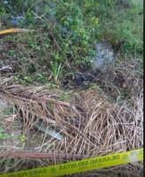 Mayat Wanita Ditemukan Membusuk di Bekas Galian Pasir
