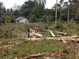 MDMC Siapkan Hunian Sementara untuk Warga Korban Tsunami di Rajabasa