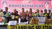 Menyamar Jadi Penumpang Kapal, Kurir Narkoba Senilai Rp15 Miliar Ditangkap