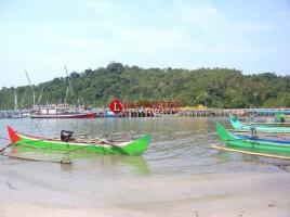 Mitra Bentala Desak Pemkot Segera Tata Kawasan Pesisir Kota
