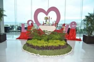 Padi Meriahkan Momen Valentine Day di Novotel