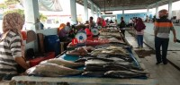 Pascalebaran, Harga Ikan Laut di Lamsel Kembali Normal