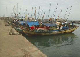 Pasokan Minim, Usaha Teri Rebus di Desa Ketapang Mandek