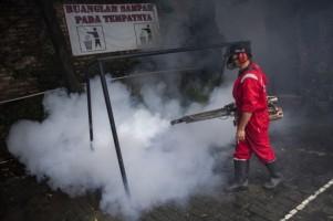 Pemerintah Diminta Proaktif Tanggulangi Demam Berdarah