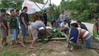 Pemkab Mesuji Potong 40 Ekor Sapi Kurban