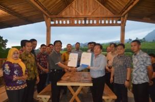Pemkab Pesibar-PT Rita Ritelindo dan PT Tjong Tujuh Kerja Sama Kembangkan Komoditas Hasil Kebun Pesibar