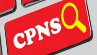 Pendaftar CPNS di Pesibar Sampai Penutupan Capai 6.815 Orang