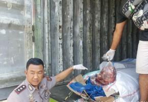 Penyelundupan 4 Ton Daging Celeng ke Bekasi Digagalkan