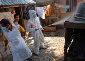 Penyemprotan Vaksin Hambat Penyebaran Flu Burung di Sukabumi