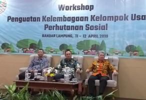 Perhutanan Sosial Solusi Perambahan Hutan