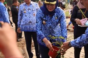Peringati Hari Lingkungan Hidup, Bupati Tulangbawang Tanam Bibit Pohon