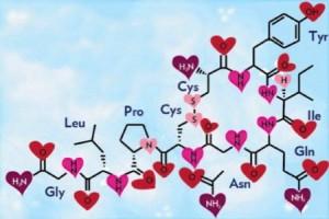 Permainan dan Hormon Cinta