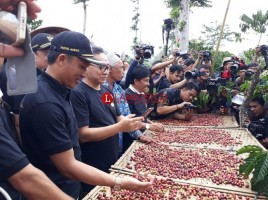 Petani Kopi Diimbau Tingkatkan Pengolahan