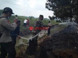 Kebakaran Lahan di Mesuji Belum `Terobati`