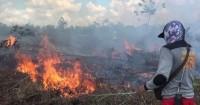 Petugas-Masyarakat Gotongroyong Padamkan Api di Kawasan TNBBS