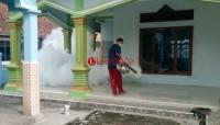 Positif Jadi Wilayah DBD, Warga Palas Diminta Aktif Berantas Sarang Nyamuk