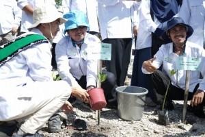 PTKIN se-Indonesia Hijaukan Tanjung Beo Lampung Selatan