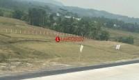 Ratusan Tanaman Padi di Ketapang Gagal Panen, Hanya 76,9 Ha Yang Daftar AUTP
