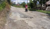 Ruas Jalan Kalirejo-Bumidaya Dipenuhi Lubang