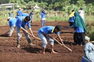 Saatnya Petani Muda Tampil