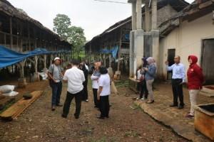 Satgas Pangan Pantau Distributor Panganan Ayam dan Gudang Telur