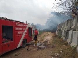 Sehari, Dua Kebakaran Lahan Terjadi di Lamsel