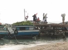 Selain Melaut, Warga Pulau Sebesi Penghasil Pisang dan Kelapa