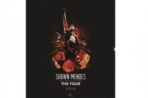 Shawn Mendes Konser di Jakarta Sediakan Area Khusus Difabel