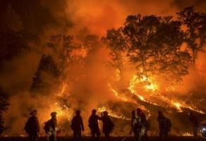Siaga Kebakaran Hutan