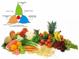 Sistem Makan dan Katastrofe