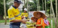 Siswa PAUD Az-Zahra SemangatPanen Buah di Coca-Cola Forest