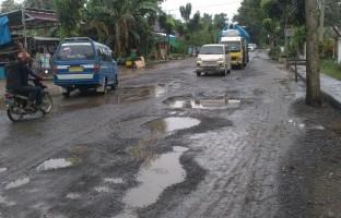 Sopir Angkot Kotabumi Keluhkan Jalan Lintah Tengah Sumatera Rusak dan Berlubang